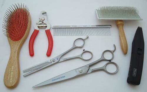 Student or Pet Dog Grooming Kit