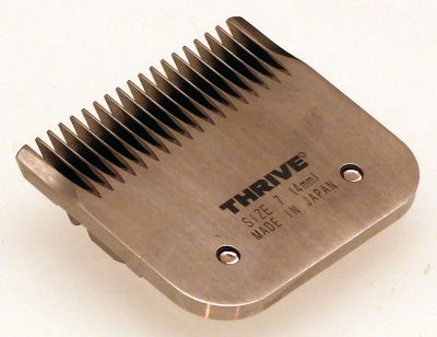 Thrive 900N No 7F